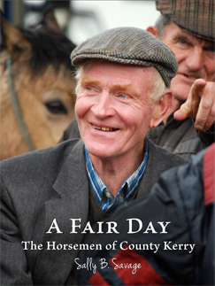 Book Cover of The Horsemen of County Kerry