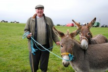 Horsemen of County Kerry - Puck Fair